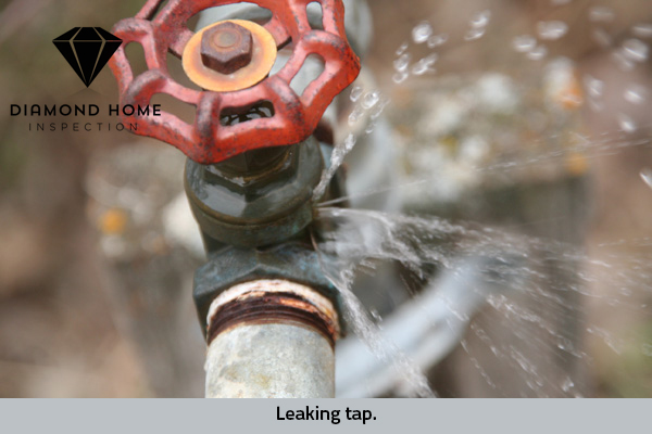 Leaking-tap hose bib frost damage